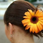 Bridal Hair with Gerbera Daisy