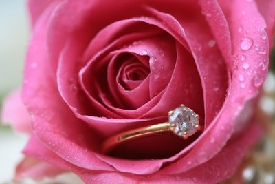 Mist-covered pink rose contains a diamond engagement ring within its petals.