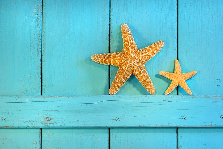 Simple starfish decorate an outdoor, beach-themed wedding.